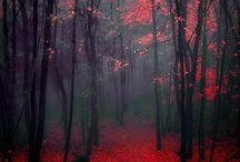 punaista ruskaa