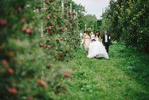 Wedding Ceremony / fine art wedding ceremony photography inspirational board