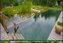 biolojik gölet /doğal havuzlar