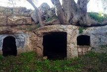 Puglia / Photos of Puglia