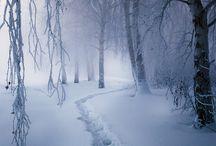 Snow -White