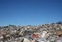 Waste Management / by Salman Zafar