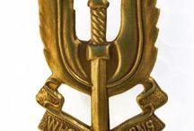 1st Bon Parachutisten en Sas insignes