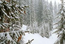 βουνο χιονια