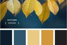 decor colors