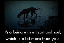 Words~Pet Quotes & Sayings / by ♀ParanormalFan Renee'🌹