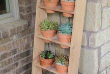 Plants ladder design