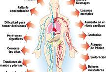 Síntomas del Estress