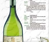 Favorite Food & Wine