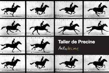 Precine / Inicios del cine (artefactos, técnicas, experiencias).