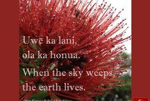 Olelo No'eau - Hawaiian Wisdom