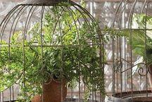 INSPIRATION decoration / Botanical decoration inspiration board.  ボタニカルデコレーションのインスピレーションボード