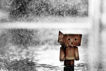 Amazon robot - Photography