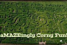 Utah Family Halloween Destinations / Looking for a family-friendly list of corn mazes and other fun Halloween activities in Utah? This is the place!  / by Allison Laypath