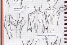 Anatomy Shoolyard