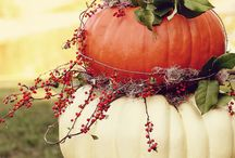 Fall decorating / by Jan Cooke