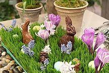 Easter / by Benni Rienzo Radic