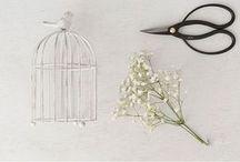 aranž.kvetiny