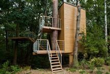 domy na drzewach