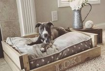 Dogs beds ideas