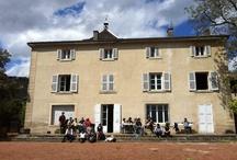 Vicky's Family Vineyard : château des Moriers