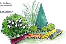 plans, garden