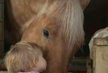 detičky a zvieratka