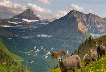 National Parks / by Bev Christensen