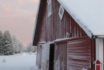 Kuin suomen talvi
