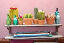 The Cactus Garden / A whole cactus garden made from felt