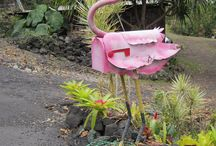 Flamingo mail boxes