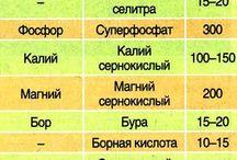 таблица подкормок