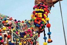 decorated animals