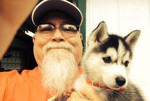 My Husky Zoie / Zoie's everyday adventures. / by Craig Norton