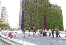 eco urbanism