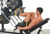 Global Gym Equipment Market