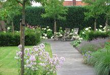 Prati e giardini
