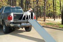 Ramps and Stamps / Our collection of ramps and steps for elderly or injured dogs. #elderlydogs #dogslife #seniordogs #dogramp #dogsteps