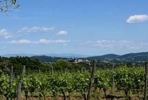 Rocambolesco Italy / The Fantastic Adventure - The Landscape of Italy