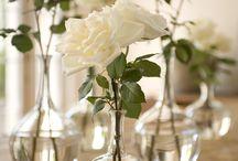 Floral Dreams / Lavender Fields, Tulip Bouquets, Magnolia Trees & More