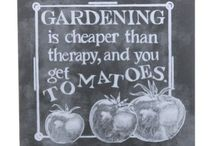 Great Gifts for Gardeners / Get these for the green-thumbed folks on your list.