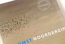 Noordervisie / De provincies Groningen, Drenthe en Fryslân ontwikkelen samen met het Noorden onder de naam 'Noordervisie 2040' een nieuwe visie op 2040 en een strategische agenda 2013-2020. Dizain (www.dizain.nl) ontwikkelde onder meer de logofamilie, de krachtige visuele beeldtaal, het webdesign van Noordervisie2040.nl en het Noordervisie-magazine.