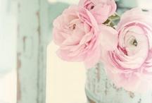 Flowers / by Kim-Rae Novroski