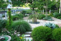 Front Yard Inspirations / by Catherine Lodigiani