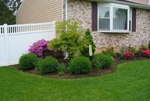 Landscaping / by Nikki P