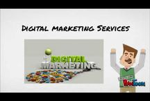 Top SEO Company in Pune | Maximus Leads