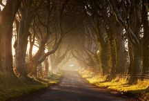 Ireland ☘