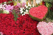 Vendedor de flor