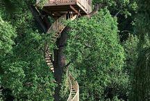 Tree House / Fin da piccolo...
