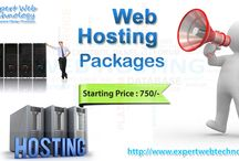 Web Hosting Packages / Web Hosting Packages Starting Price : Rs. 750  - Disk quota (MB): 200MB - Monthly bandwidth (MB) 17,00 MB - Max FTP Accounts: 2 - Max Email Accounts: 10 - Max Sub Domains: 2  For More Info Visit Here: http://www.expertwebtechnology.com/web-hosting-packages.html